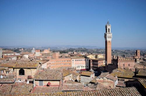 Siena dall'alto: piazza del campo